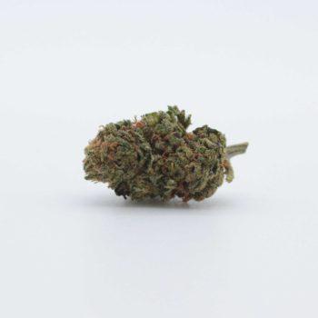 Premium Gorilla Glue – CBD 12%